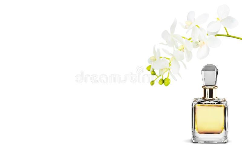 Garrafa e flores de perfume isoladas no fundo fotos de stock royalty free
