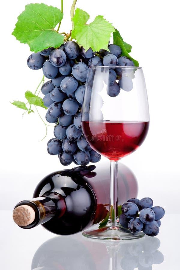 Garrafa e vidro do vinho tinto, grupo de uvas com as folhas isoladas no fundo branco imagens de stock