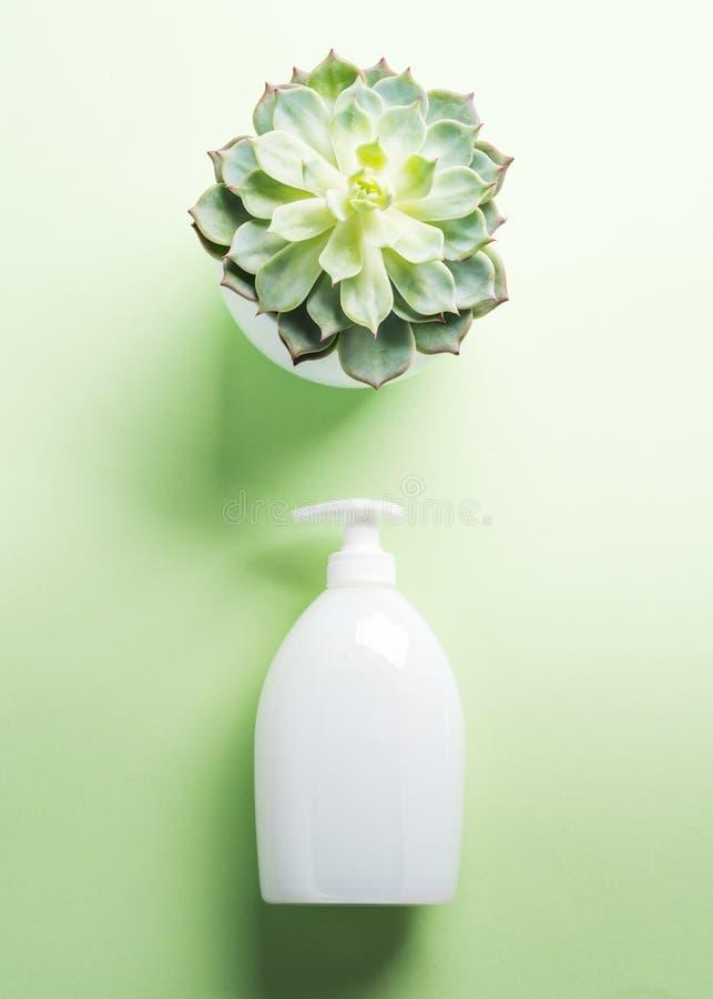 Garrafa natural branca do sab?o no verde pastel fotos de stock royalty free
