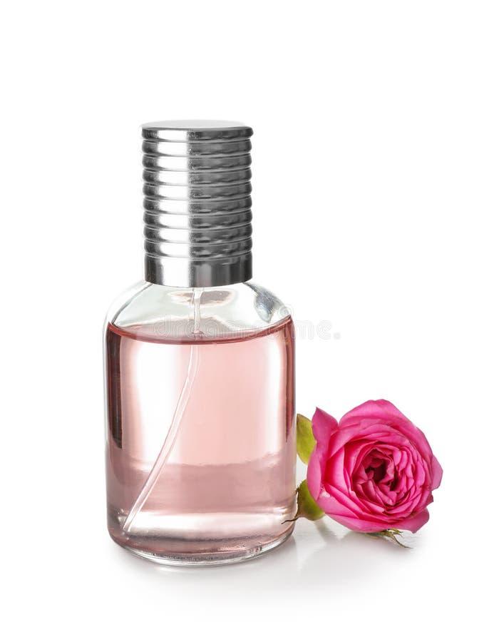 Garrafa transparente do perfume com a flor cor-de-rosa no fundo branco foto de stock