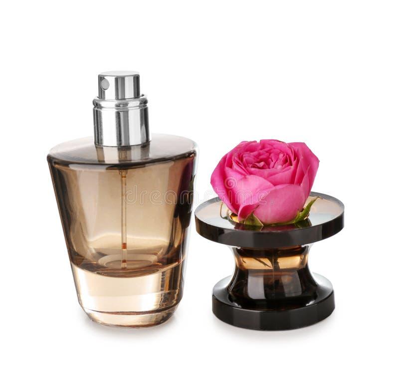 Garrafa transparente do perfume com a flor cor-de-rosa no fundo branco fotos de stock royalty free