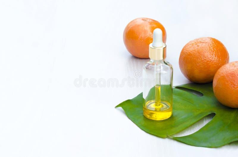 Garrafas com os produtos naturais cosméticos e soro da vitamina C no leav verde, no fundo branco Conceito dos tratamentos do salã foto de stock