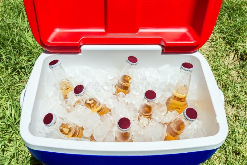 Garrafas da cerveja na caixa mais fresca com gelo imagem de stock royalty free