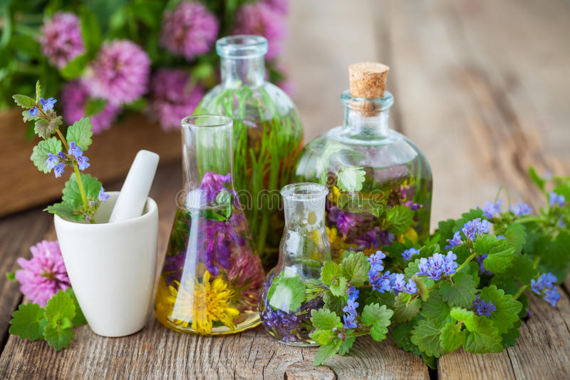 Garrafas da infusão de ervas saudáveis, de almofariz e de plantas curas imagens de stock royalty free