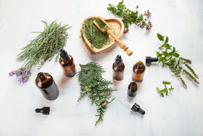 Garrafas de óleos essenciais imagens de stock
