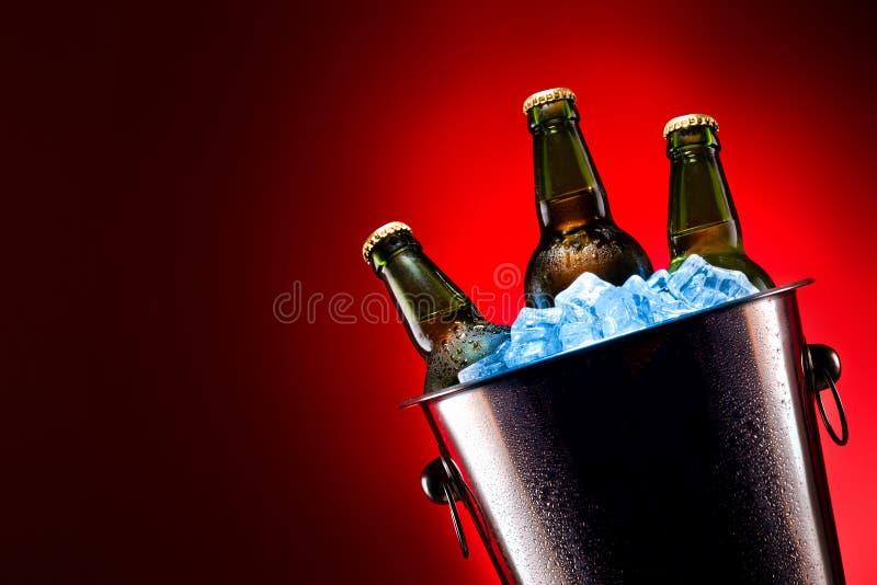 Garrafas de cerveja na cubeta de gelo fotografia de stock royalty free