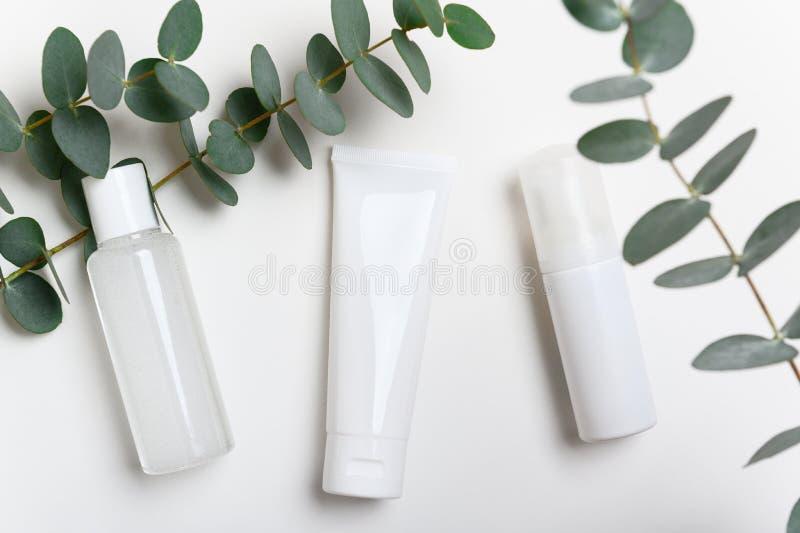Garrafas de produtos cosméticos sobre fundo branco Creme facial, máscara Água micelar num recipiente transparente Batida fotografia de stock royalty free