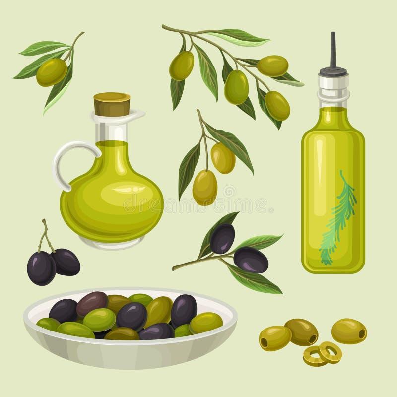 Garrafas de vidro do azeite, ramos com alimento verde e preto das azeitonas, o orgânico, o natural e o saudável, produto do veget ilustração stock