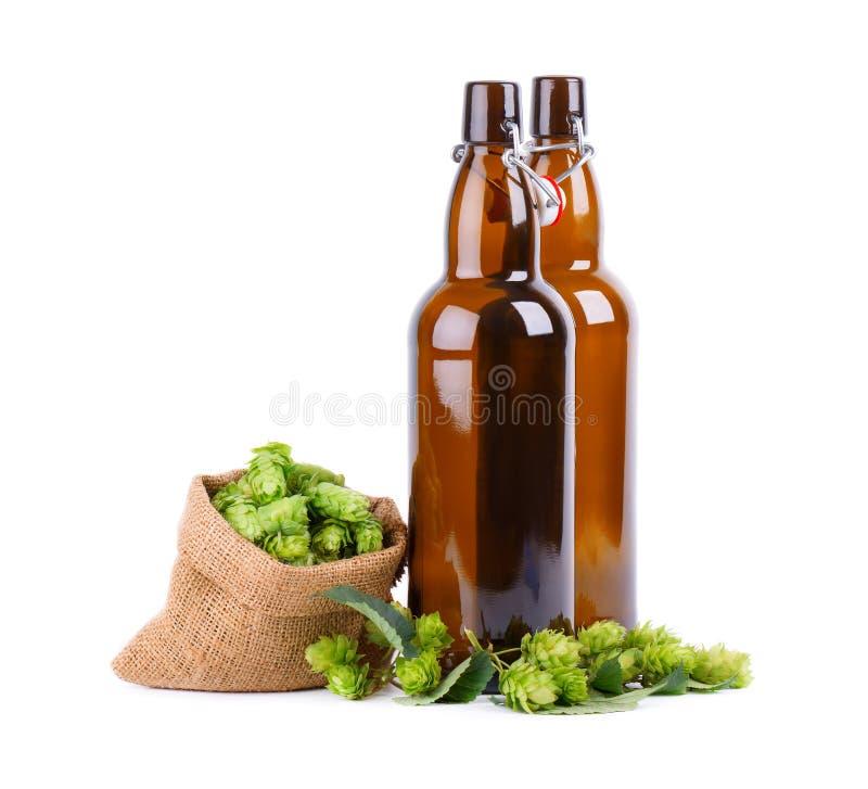 Garrafas de vidro para a cerveja de kraft com o ramo verde fresco dos lúpulos, isolado no fundo branco imagem de stock royalty free