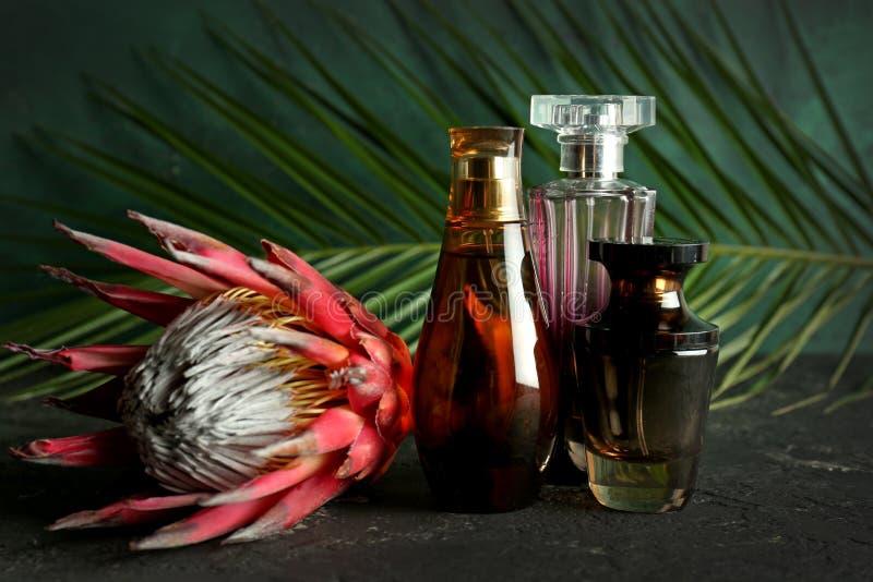 Garrafas do perfume e da flor na tabela cinzenta fotos de stock royalty free