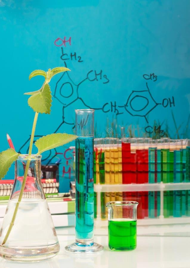 Garrafas, tubos de ensaio com líquidos, plantas e fórmulas no azul foto de stock