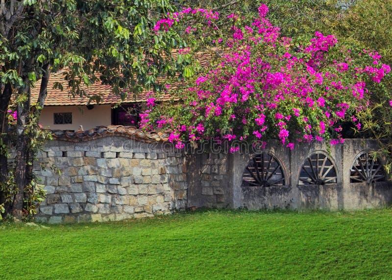Garten lizenzfreies stockbild