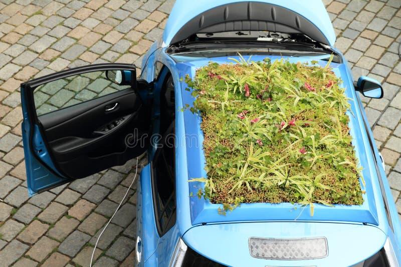 Garten auf Auto stockfotos