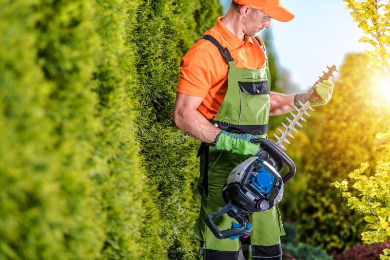 Garten-Baumaschinen lizenzfreie stockbilder