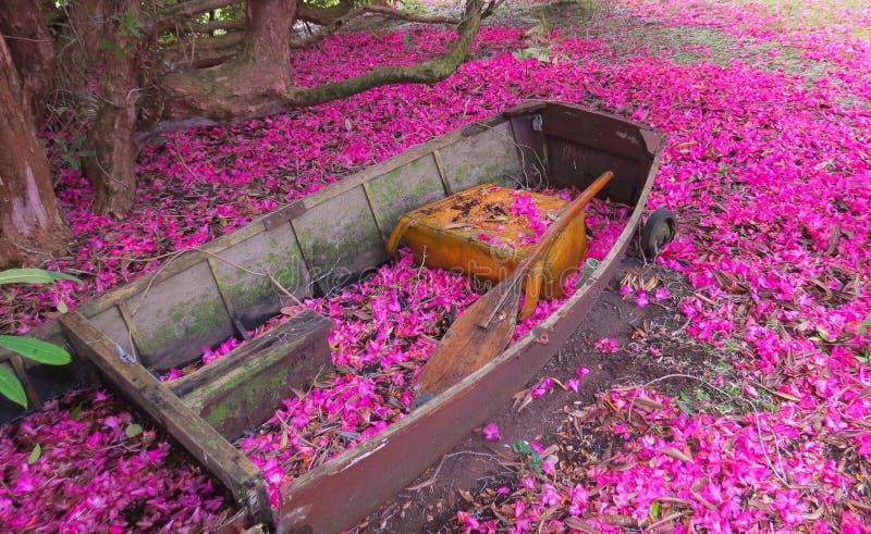 Garten-Boot. stockbilder