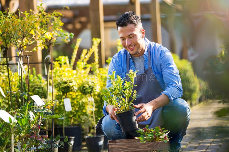 Garten-Center-Angestellter lizenzfreie stockbilder