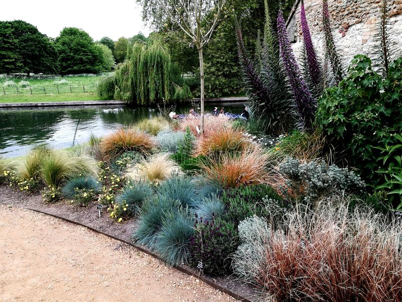 Garten in der Universität von Cambridge lizenzfreies stockfoto
