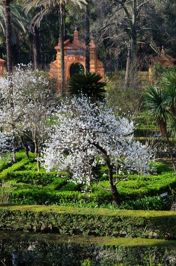 Garten des Alcazarpalastes, Sevilla, Andalusien, Spanien stockfotos