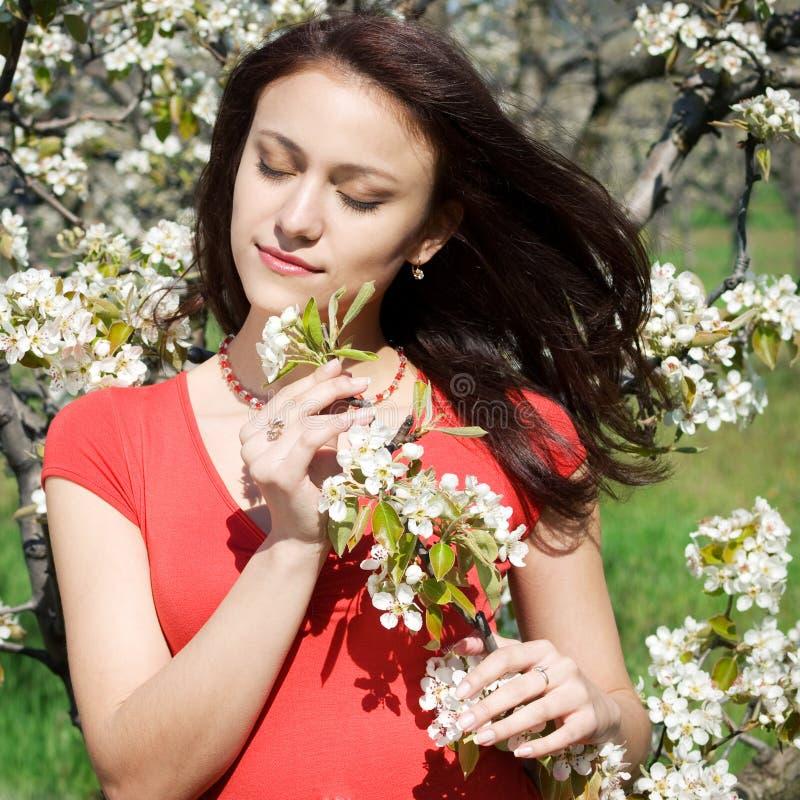 Garten des Mädchens im Frühjahr stockbild