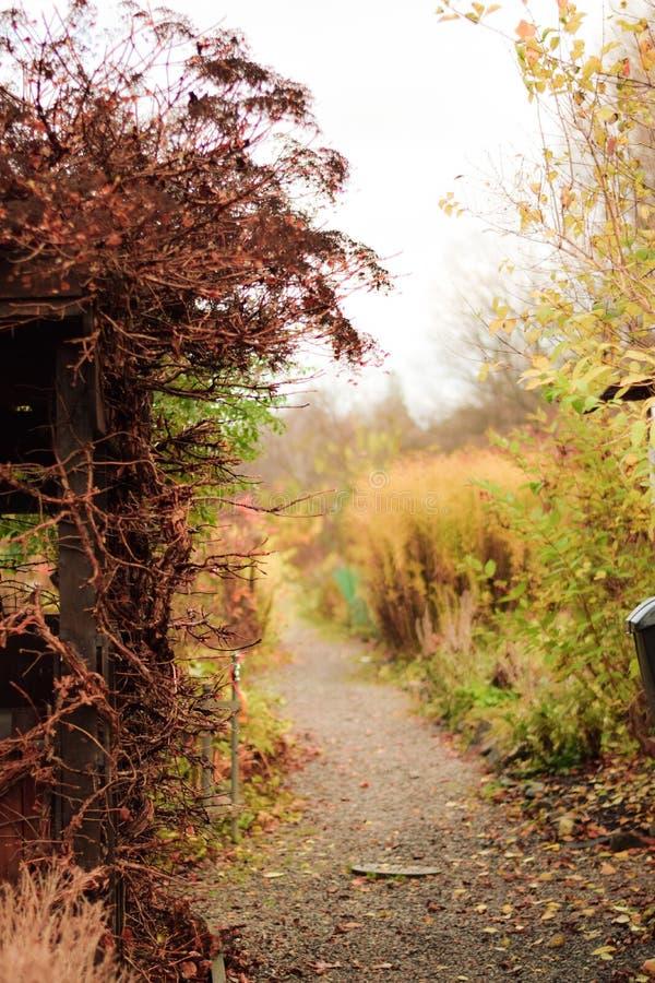Garten des verborgenen Geheimnisses im Herbst stockbild
