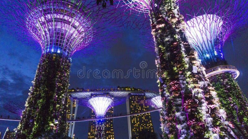 Garten durch die Bucht in Singapur lizenzfreie stockfotos
