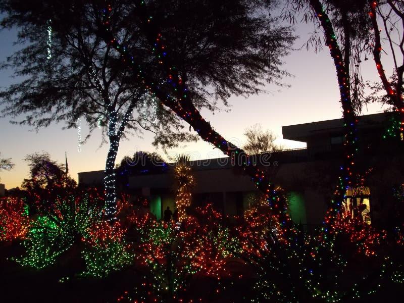 Garten Ethel M Chocolate Factory Cactus verziert für Weihnachten lizenzfreies stockfoto