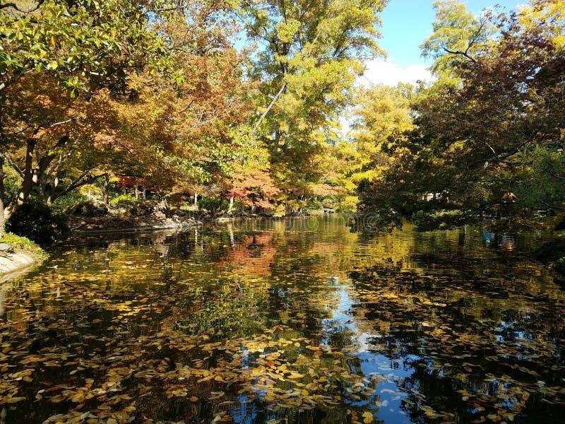 Garten Fort Worths Japenese stockfotos