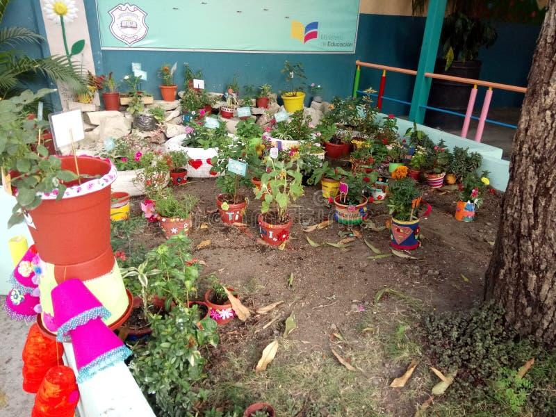 Garten gemacht von den Studenten in Highschool Matovelle in Guayaquil stockfotos