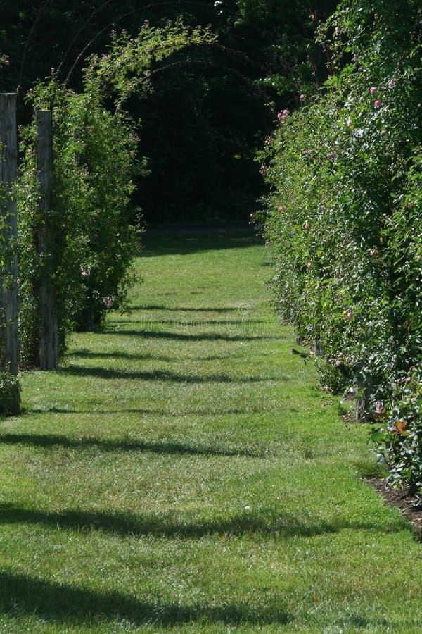 Garten-Gitter, Rose Garden, Paradies stockbild
