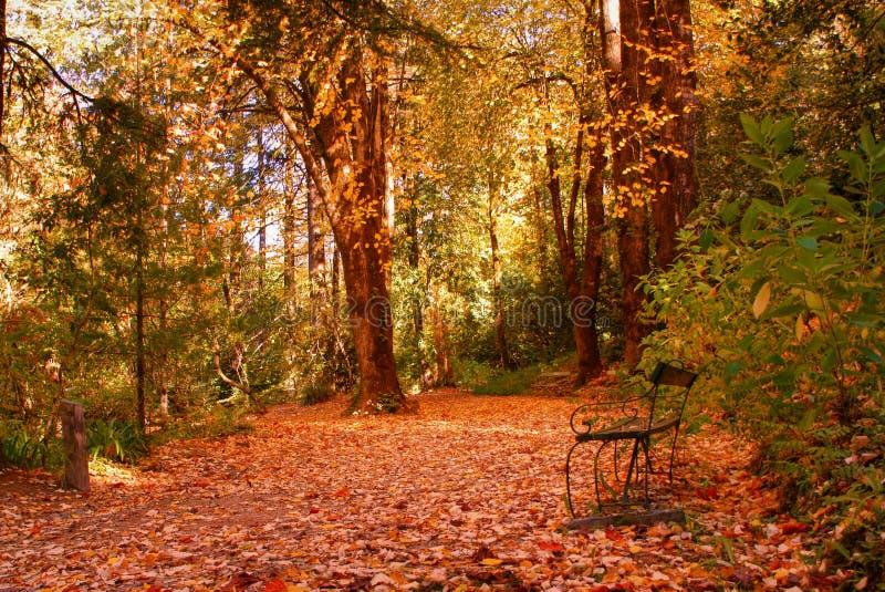 Garten im Nationalpark von Peneda Geres lizenzfreie stockfotos