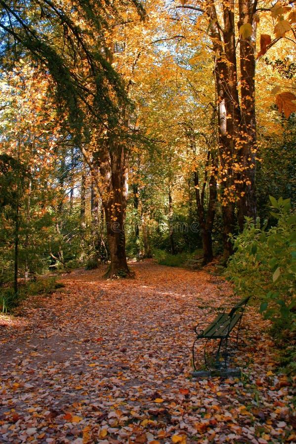 Garten im Nationalpark von Peneda Geres stockfotos