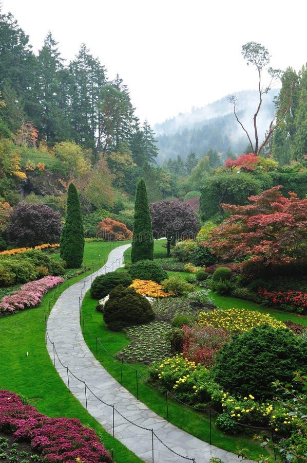 Garten im Nebel lizenzfreies stockfoto