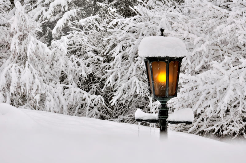 Garten im Winter lizenzfreies stockbild