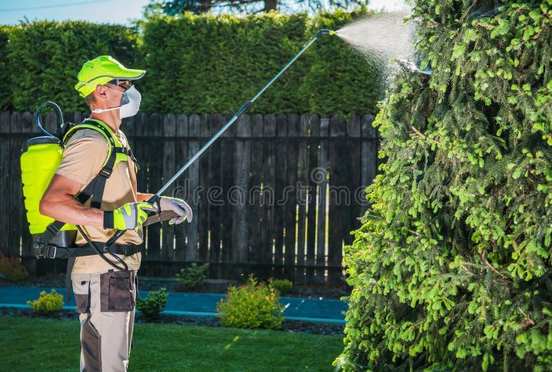 Garten-Insektenvertilgungsmittel durch das Sprühen lizenzfreie stockfotos