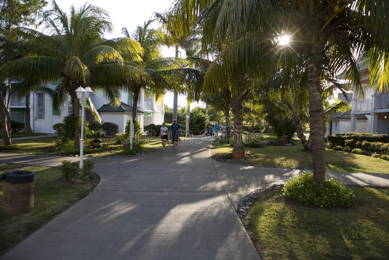 Garten in Kuba lizenzfreie stockfotos