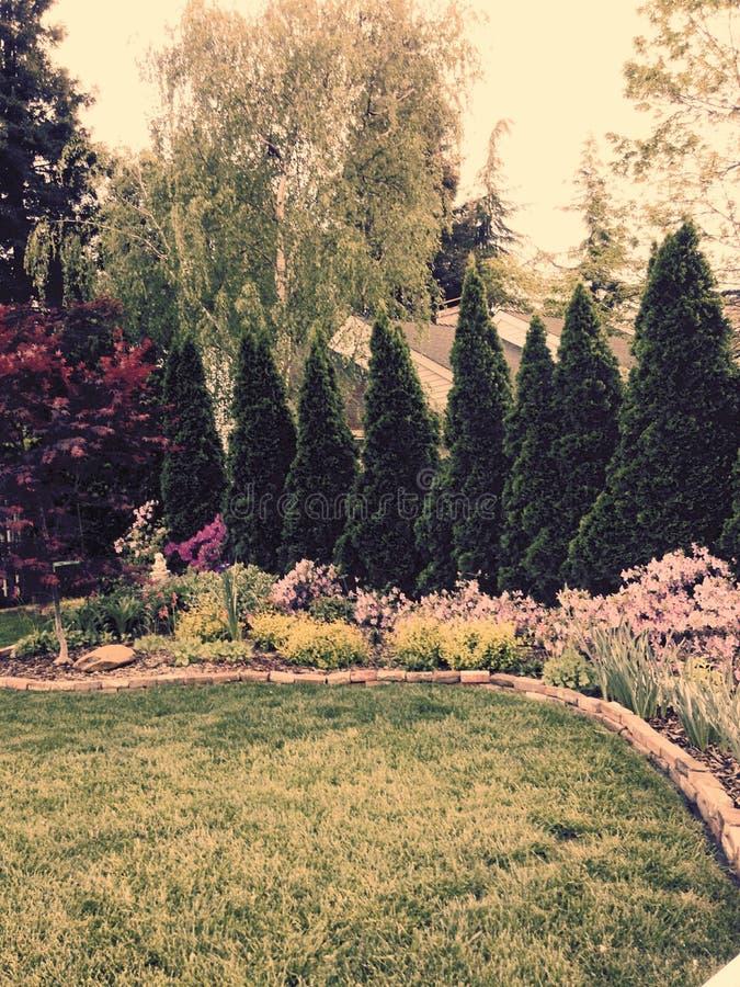 Download Garten Mit Bäumen, Blumenbüsche Stockfoto   Bild Von Auch, Bäume:  52528316