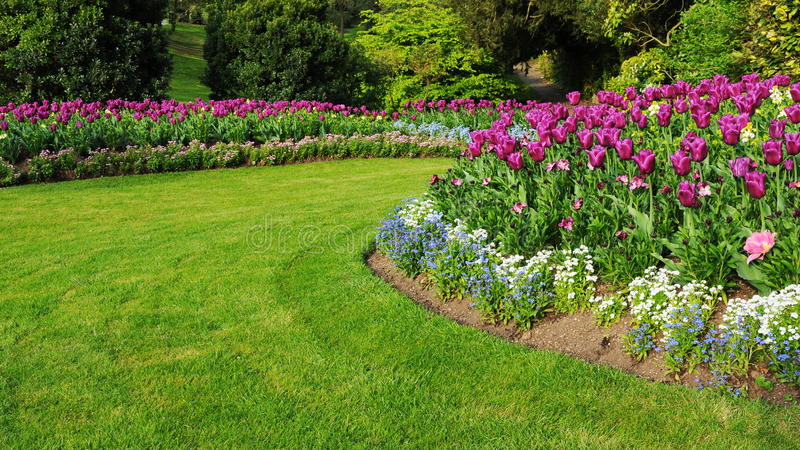 Garten mit einem bunten Blumenbeet und einem Gras-Rasen stockbilder
