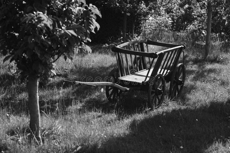 Garten mit Hand gefahrenem Warenkorb in Schwarzweiss lizenzfreie stockfotos