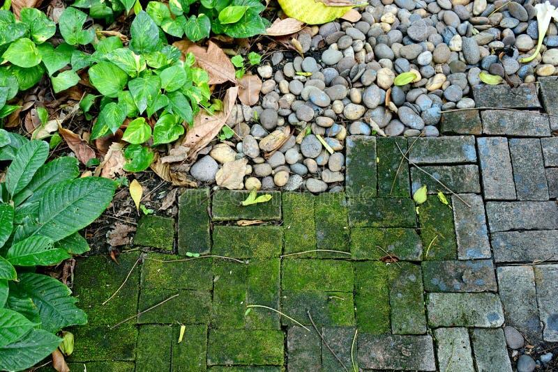 Garten mit MOS-Felsen und viel Sache lizenzfreie stockfotos