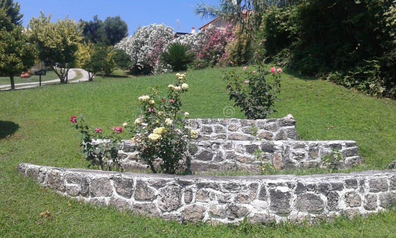 Garten mit Rosen und anderen Blumen stockbilder