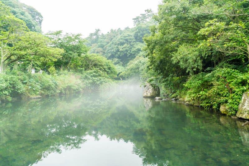 Garten-Park an Cheonjiyeon-Wasserfällen in Jeju-Insel stockfoto