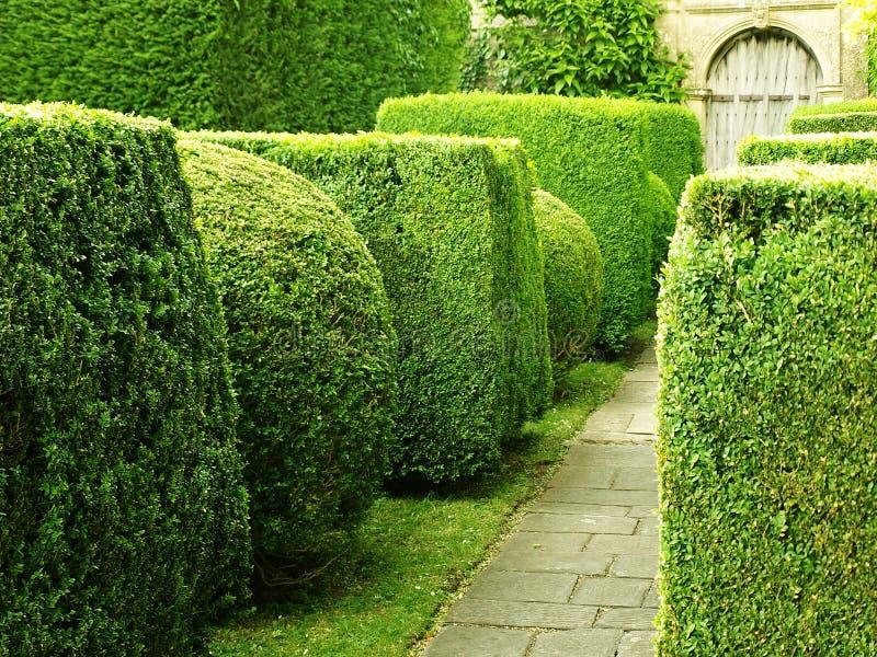 Garten-Pfad lizenzfreies stockbild