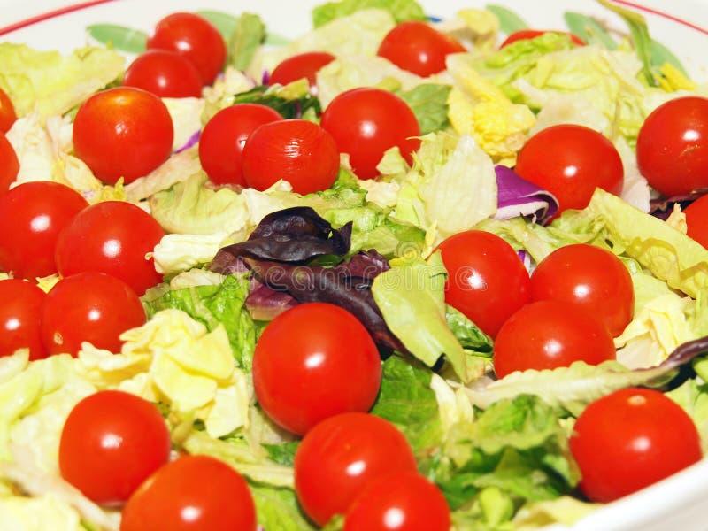 Garten-Salat-Abschluss oben stockfoto