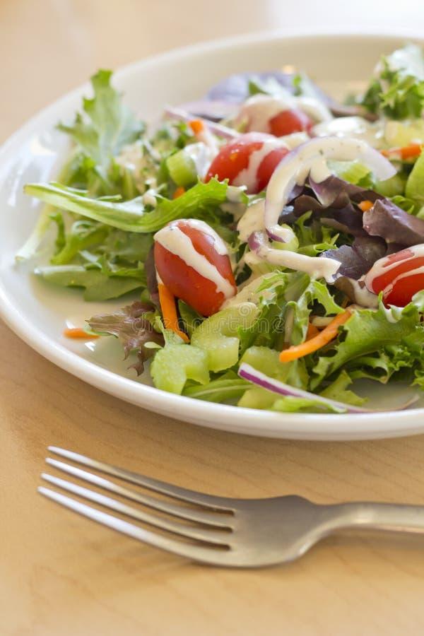 Garten-Salat-Ranch lizenzfreies stockfoto