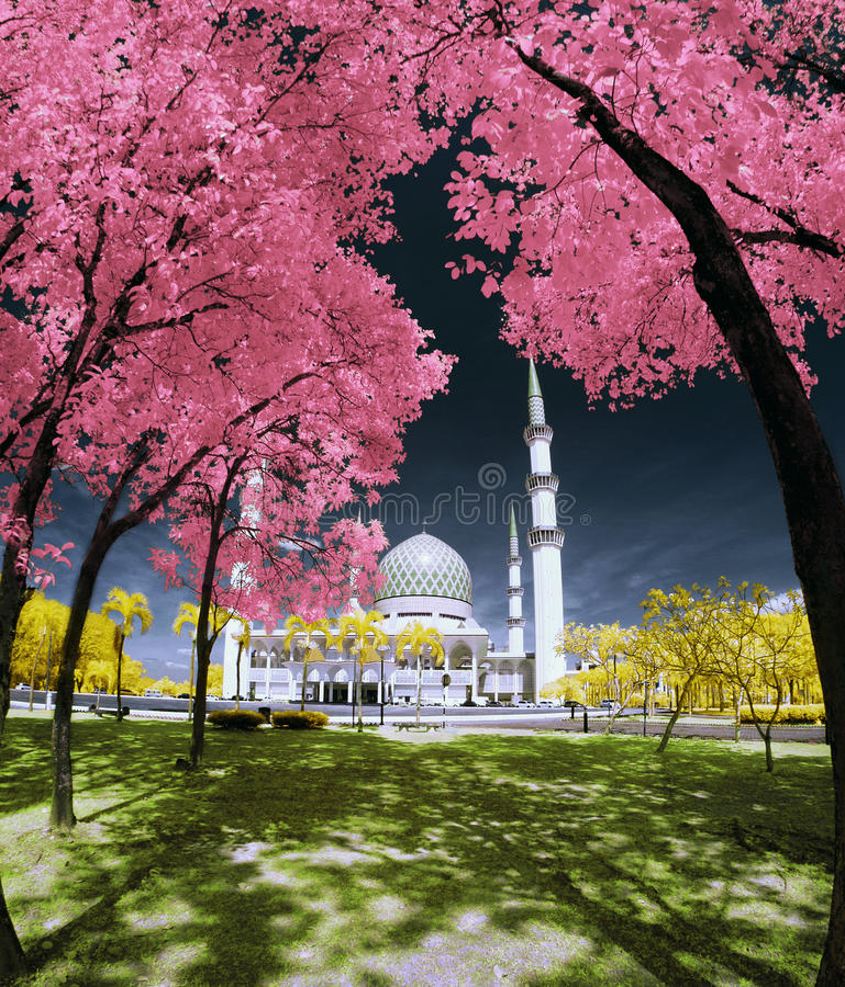 Garten-Schah Alam Mosque Selangor Fantasy lizenzfreie stockbilder
