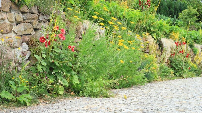 Garten und Blumen lizenzfreie stockbilder