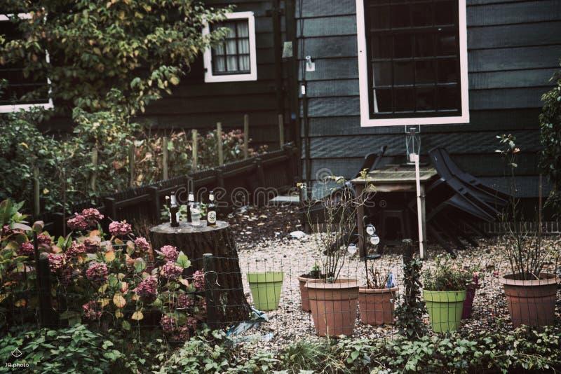 Garten vor Haus lizenzfreies stockbild