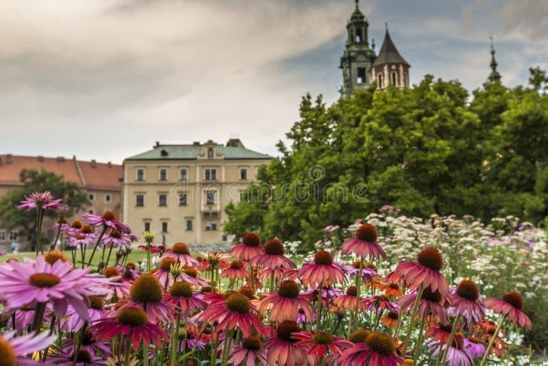Garten in Wawel-Schloss, Krakau, Polen lizenzfreies stockfoto
