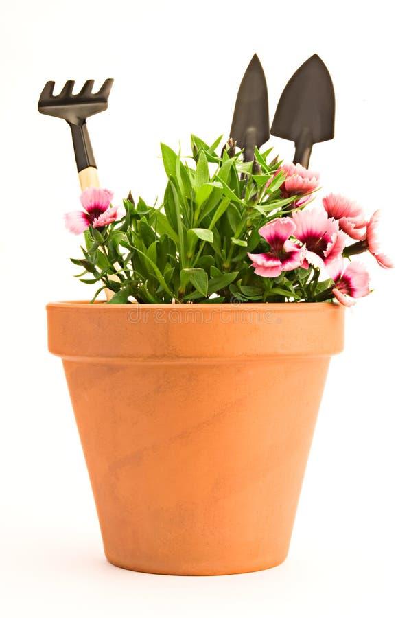 Gartenarbeit lizenzfreie stockbilder
