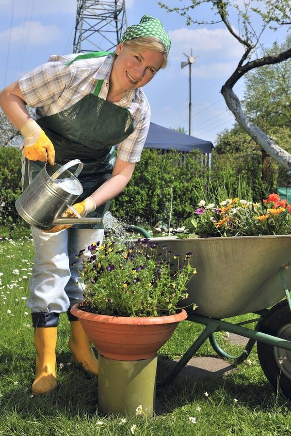 Download Gartenarbeit stockfoto. Bild von gardening, obacht, schönheit - 9094342